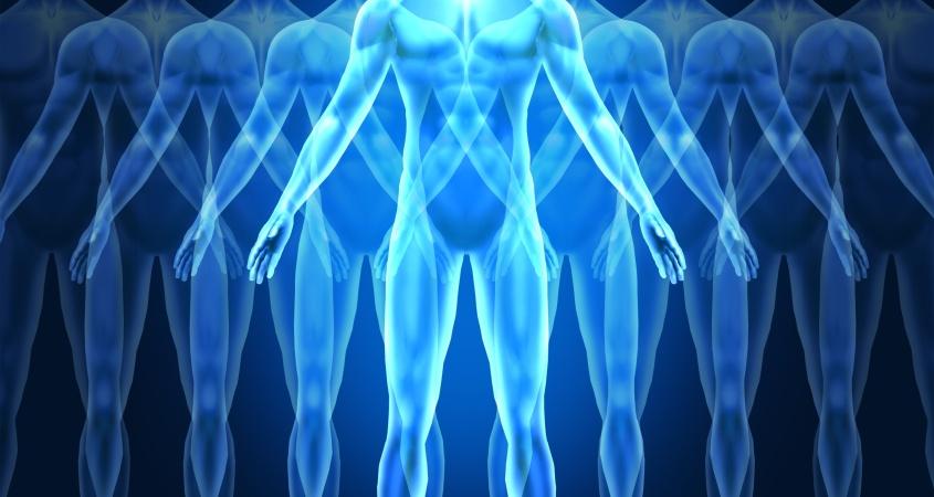 Detoxified Body